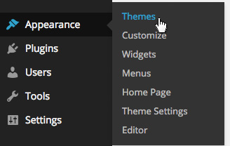 Appearance > Themes