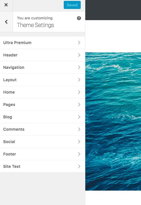 Ultra Theme Settings Customizer Move